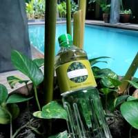 Essentials Premium Massage Oil - Minyak Pijat Kelapa - Natural - 1L