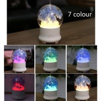 Humidifier immortal Flower 7 led color diffuser hp009