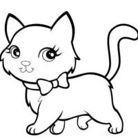 Download 61+  Gambar Kucing Anggora Untuk Mewarnai Paling Imut Gratis