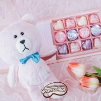 Kado Boneka Coklat Pink