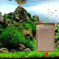 Bibit Rumput Air Dekorasi Aquarium Landscape Ornament - Small Fescue