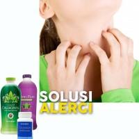 PAKET HERBAL Obat Untuk Alergi (NoniPlus Colostrum Chlorofil Synergy)