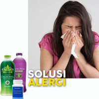 NoniPlus Chlorophyll Colostrum Synergy Obati Alergi Udara Yang Ampuh