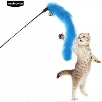 Mainan Kucing persia peaknose kampung tongkat Kerincing lonceng kucing