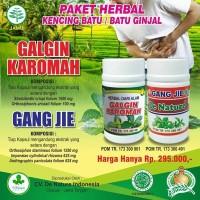 PAKET HERBAL Obat Penghancur Batu Ginjal DE NATURE