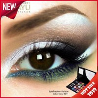 Harga Eyeshadow Sariayu 25 Warna Katalog.or.id