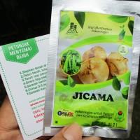 Bengkoang Jicama