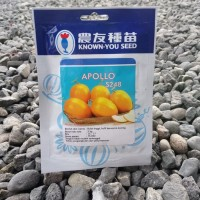 Bibit Benih MELON APOLLO 20 Gram