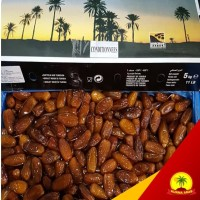 Palm Frutt - Kurma Paling Laris - Kurma Arab - Kurma Nabi