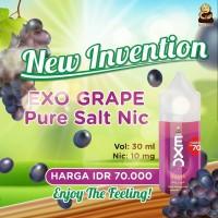 (Salt Nic) Exo Grape Salt Nic 10MG 30ML Exo Salt Nic Grape Exotic Monk