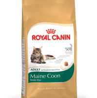 Cat Food Royal canin Maine Coon 4kg