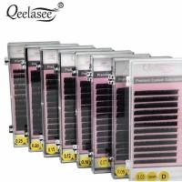 Qeelasee Lash Beauty Premium
