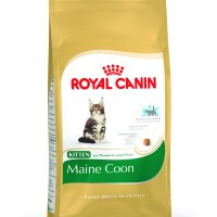 Cat Food Royal canin Kitten Maine Coon 400gr