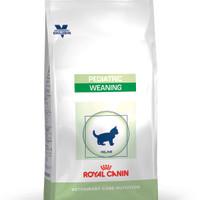 Cat Food Royal Canin Pediatic weaning 2kg