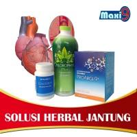 MAXI-9 Paket Solusi Jantung & Migrain Original Synergy