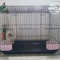 Kandang Kucing Hamster Burung Sugar Glider ular landak mini Size M