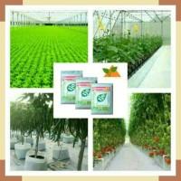 Harga nutrisi ab mix 1700 gram untuk semua   Pembandingharga.com