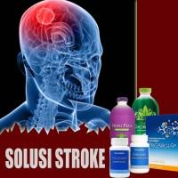 PAKET HERBAL Obat Alami Untuk Penderita Stroke Ringan 100% Ampuh
