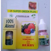 Super Green Plus Obat Sariawan Cap Vit Berry | Obat Sariawan Joss