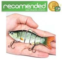 Kail Pancing Bentuk Ikan Hidup - SAJ-042 - Multi Warna
