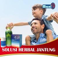 PAKET HERBAL Gejala Jantung Koroner MAXI-9 & Jaringan Saraf