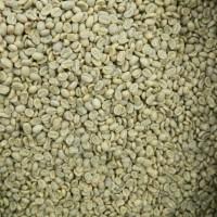 Green Beans Kopi Argopuro Natural Jawa Timur (1 Kg) Grade 1