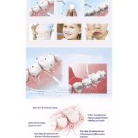 Semprotan Pembersih Sela Gigi Dental SPA Water Floss