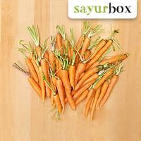 Wortel mini (Baby carrot) Organic