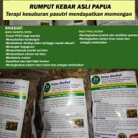 Rumput Kebar Papua Terapi Kesuburan