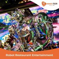 TIKET ROBOT RESTAURANT ENTERTAINMENT TOKYO