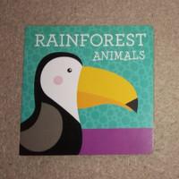 Rainforest Animals - Buku Anak Bayi Board Book