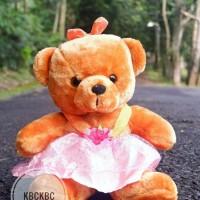 Boneka Teddy Bear Rok Tutu Lucu