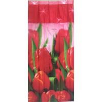 Download 58 Gambar Bunga Tulip Untuk Anak Tk HD Gratid