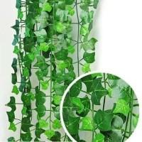jual 1 meter daun rambat / tanaman hias sulur palsu
