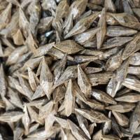Gaharu Super Asli Indonesia (100 gram)