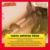 Racun Tikus RAMTUS 6 Pack - Pembasmi Tikus Paling Ampuh