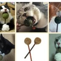 Mainan Kucing Bola Catnip Relaksasi