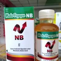 NUTRIBRAIN F2 Madu Pegagan Albumin Gingko Biloba Kecerdasan Otak Anak