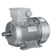 1LE0102-1AB42-2FA4 - SIEMENS Electric Motor (2.2KW 4P B5)