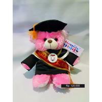 Boneka Wisuda Puffy Bear 30cm plus Bordir Selendang