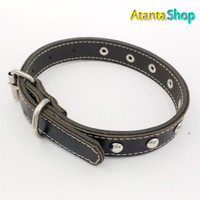 Atanta - Kalung Kulit 42x2cm collar for dog kalung anjing no2