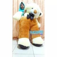 Harga boneka teddy bear jumbo 1 5 | antitipu.com
