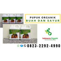 ✔️PANEN//.. TLP: o823*2292*499o. ASLI pupuk padi terbaik di Medan