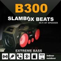Speaker Advance B300 bluetooth Speaker