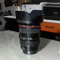 Canon EF 24-105mm f.4 L IS USM