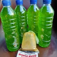 Green Water Chlorella Plus Pupuk