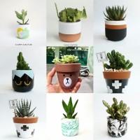 Pot Bunga Kaktus Mini Terracotta Custom
