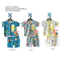 VELVET JUNIOR Setelan Baju Pendek + Celana Pendek Newborn ( PLAYFULL )