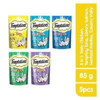 [Bundling 5 Pack] TEMPTATIONS™ Snack Kucing 5 Rasa