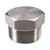 """plug stainless 304 class 3000 2"""" (inch)"""